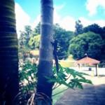 fotos_00022